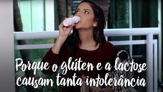 Porque o glúten e a lactose causam tanta intolerância