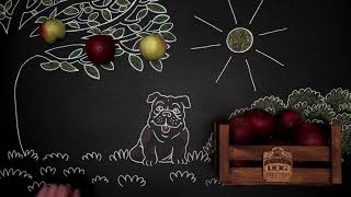 Royal Dog Cider I námět, produkce, postprodukce