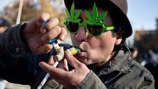 Weed (CA) United States  city images : Huge State Legalizes Recrational Marijuana