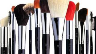 Makeup 101:  Complete Guide to Makeup Brushes!!!