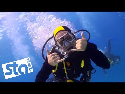 Exploring The Great Barrier Reef with Jacob Dixon | STA Travel (видео)