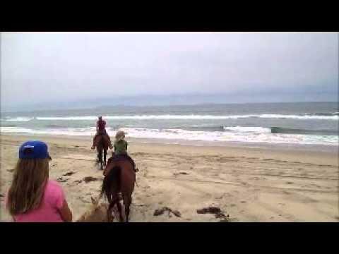 Horseback Riding Happy Trails Beach Ride San Diego California