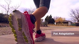 Healthy Living - Become a Fat-Burning Machine