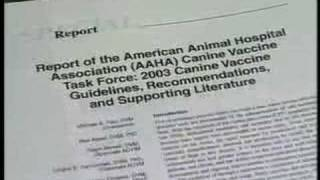 Vaccinating Pets - Controversial and Important