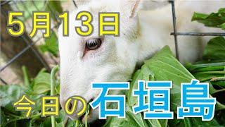 5月13日の石垣島天気