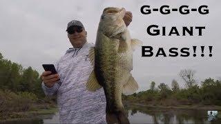 Video Lake Fork Spring Bass Fishing Featuring 10lber!!! MP3, 3GP, MP4, WEBM, AVI, FLV Mei 2019