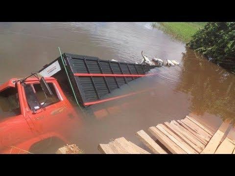 Galera dos Boiadeiros - Caminhões ao Extremo #05