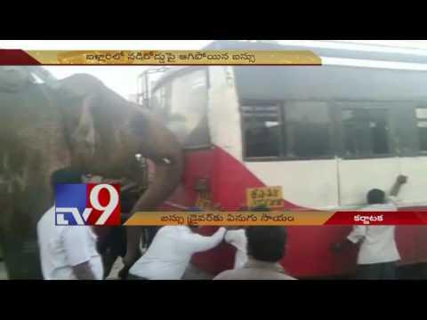 Elephant helps jump start Bus in Karnataka !