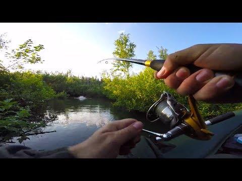 ловля щуки на лесных реках видео