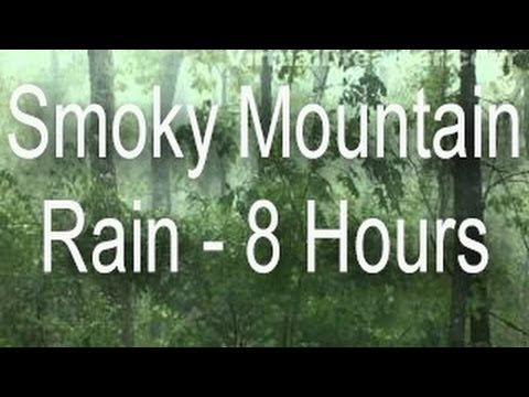 rain - 8 hour long video that highlights the sound of rain. Static shot of gentle raining in the fog on the Smoky Mountains. An excellent noise mask and sleep video...