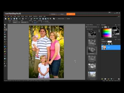 Background Removal with Fine Detail in PaintShop Pro X6