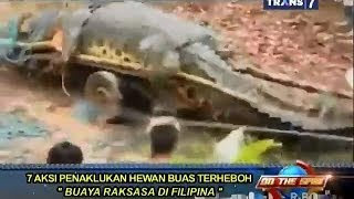 Video On The Spot - 7 Aksi Penaklukan Hewan Buas Terheboh MP3, 3GP, MP4, WEBM, AVI, FLV Februari 2018