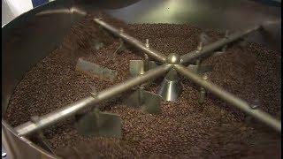 Cafeicultores de Garça investem em tecnologia para conquistar mercado internacional