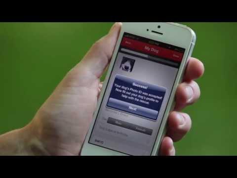 'Finding Rover', una app para encontrar a tu perro