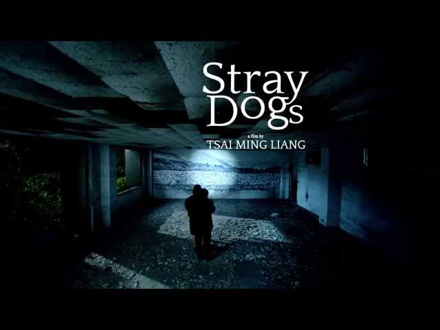 trailer Stray Dogs