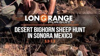 Video Long Range Pursuit | S3 E3 Desert Bighorn Sheep Hunt in Sonora Mexico MP3, 3GP, MP4, WEBM, AVI, FLV September 2017