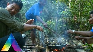 Video JEJAK PETUALANG 9 Des 2015 - SERBA BESAR DR PAPUA 3-1 MP3, 3GP, MP4, WEBM, AVI, FLV Januari 2019