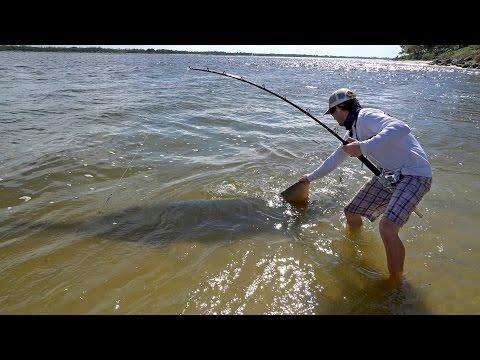 Florida Fisherman Hooks Endangered 17ft Gigantic Sawfish