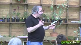 Markus redet über Pointilla (Englisch)