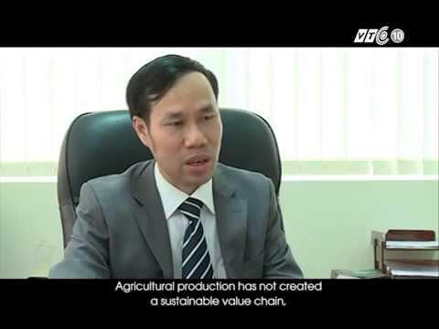 Tình trạng vốn FDI đầu tư vào nông nghiệp tại Việt Nam VTC10