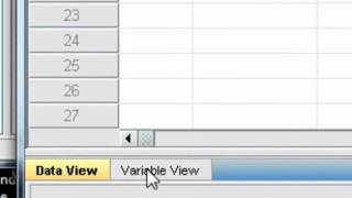 Importing Data Into SPSS From Excel