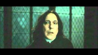 I do not own any of this video. All rights goes to Warner bros J.K. Rowling.
