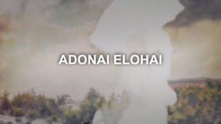 Paul Wilbur  Adonai Elohai Spanish Version Lyric Video