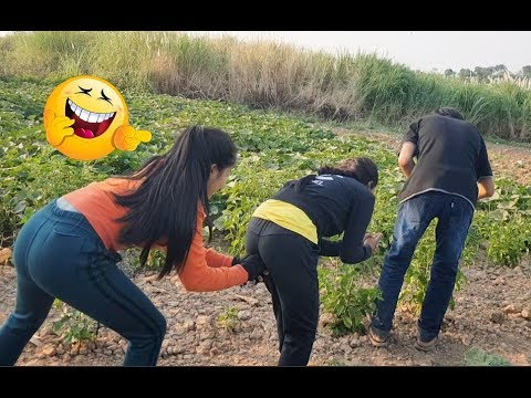 Funny videos by HUn mono,try not to laugh at the farm