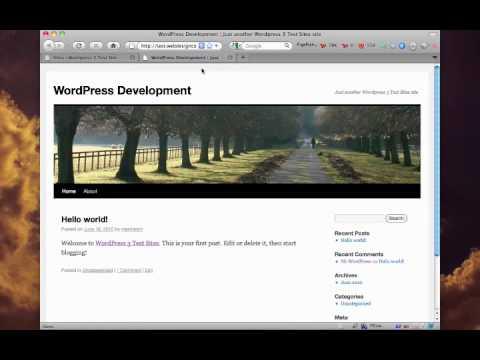 0 WordPress MultiSite kurmak ve tüm detayları
