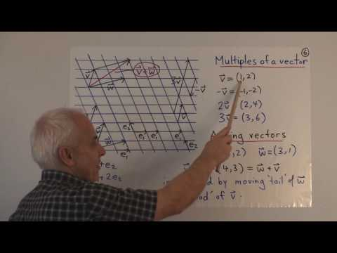 WildLinAlg1: Introduction to Linear Algebra