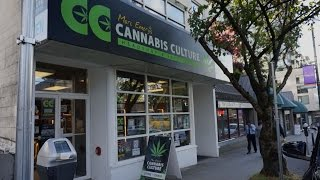 Cannabis Culture's Davie St. Location by Pot TV