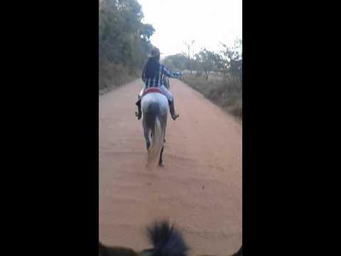 Cavalgando em Bonfim
