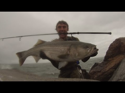 Surf Casting R.I. 30 and 25 lb Stripers