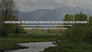 Укрепление продовольственной безопасности и питания на Кавказе и в Центральной Азии