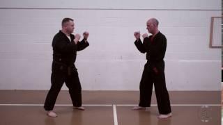Partner Round Kick