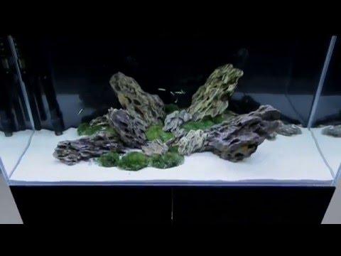Aluminium-Aquariumabdeckung  LED T5  Zoolicht.de