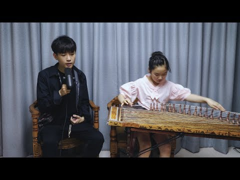 BTS - Blood Sweat & Tears Cover (Beatbox X gayageum)
