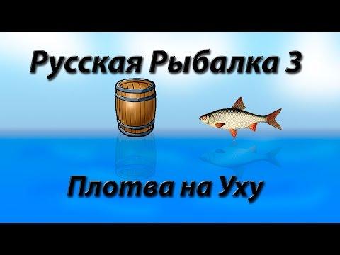 рыбалка 3 рыбхоз плотва