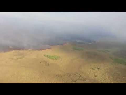 Policiais ambientais e equipes do Corpo de Bombeiros das cidades de Fátima do Sul, Naviraí, Nova Andradina e Ivinhema trabalham no combate ao fogo no parque, que possui uma área de 73.345 hectares.