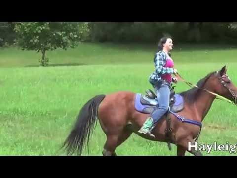 Horseback Riding Ellwood City PA