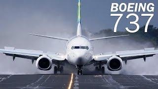 Video Boeing 737 - the most popular airliner MP3, 3GP, MP4, WEBM, AVI, FLV Februari 2019