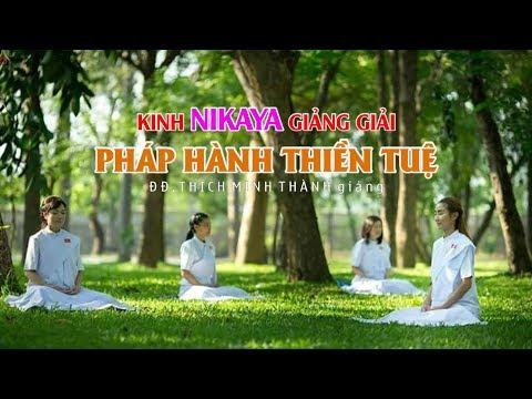 Kinh NIKAYA Giảng Giải - Pháp Hành Thiền Tuệ