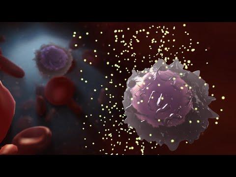 hiv: un super anticorpo potrebbe sconfiggerlo! incredibile scoperta!