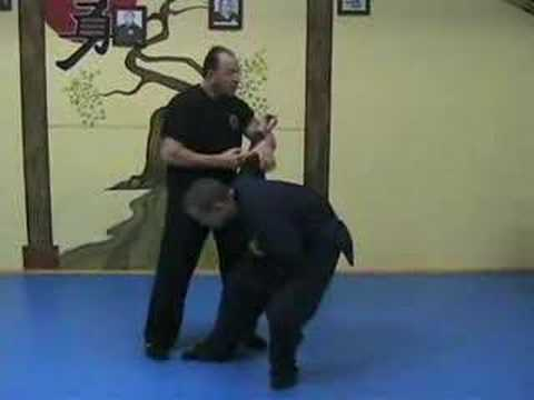 Deadly Martial Arts Techniques [Warning!]