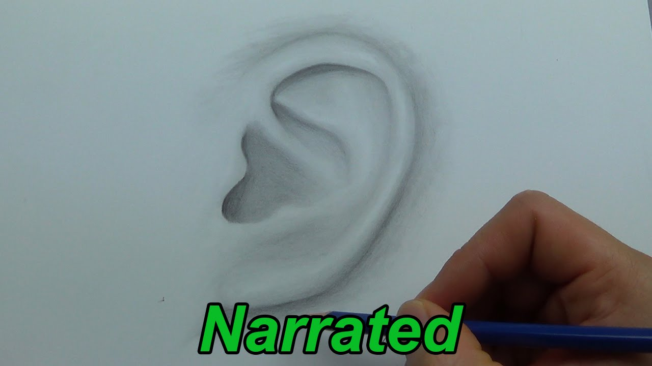 How To Draw An Ear Drawing Ears (narrated) #howtodraw #learntodraw How To