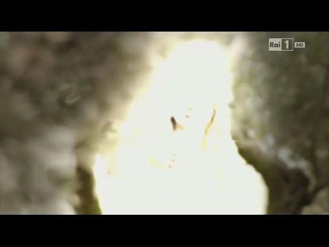 04 Angel Gabriel appears to Joseph