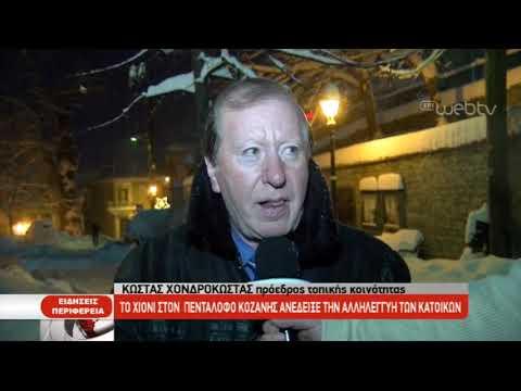 Το χιόνι ανέδειξε την αλληλεγγύη των κατοίκων στον Πεντάλοφο Κοζάνης | 11/01/2019 | ΕΡΤ