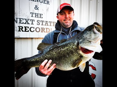 "New Tennessee Record Largemouth a ""Mere Formality"""