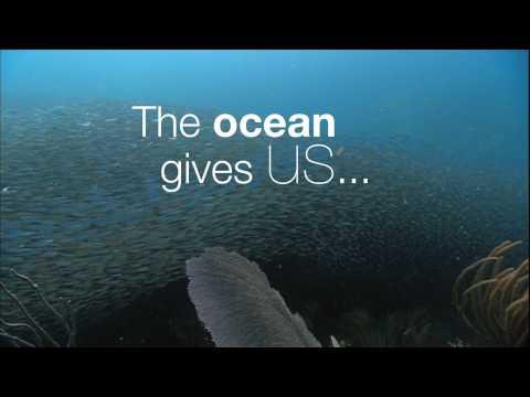 OCEAN of TRUTH