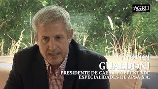 Gabriel Gualdoni - Presidente de Caena y Gte. de Especialidades de Apsa S.A.